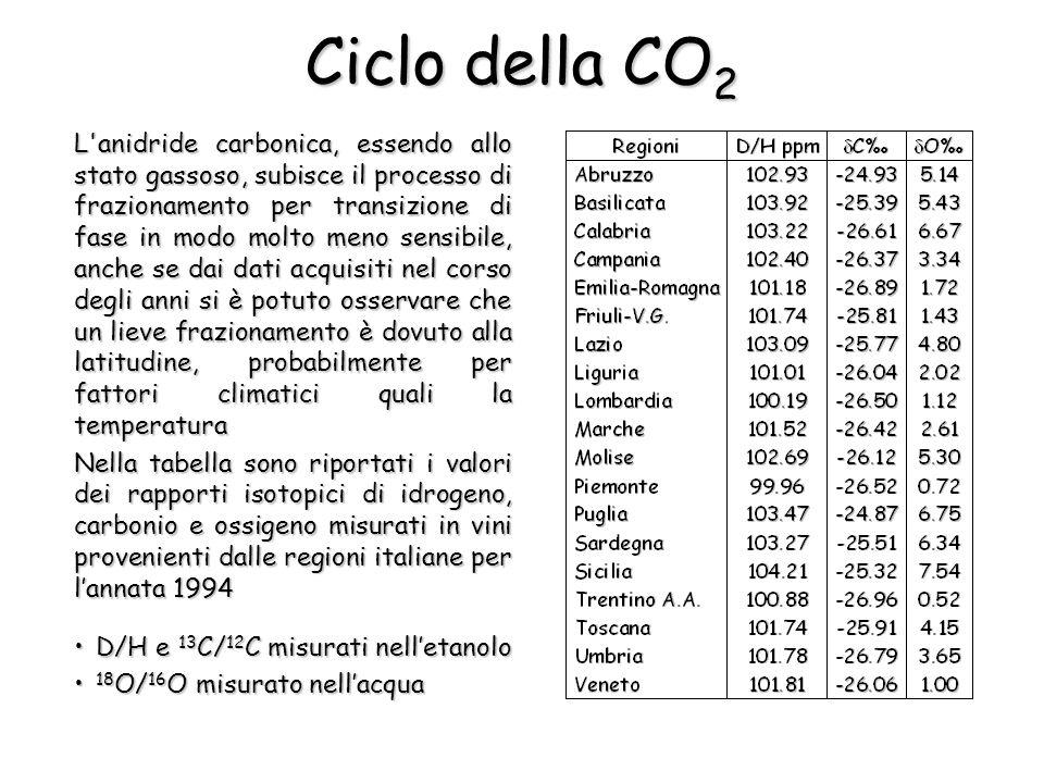 Ciclo della CO2