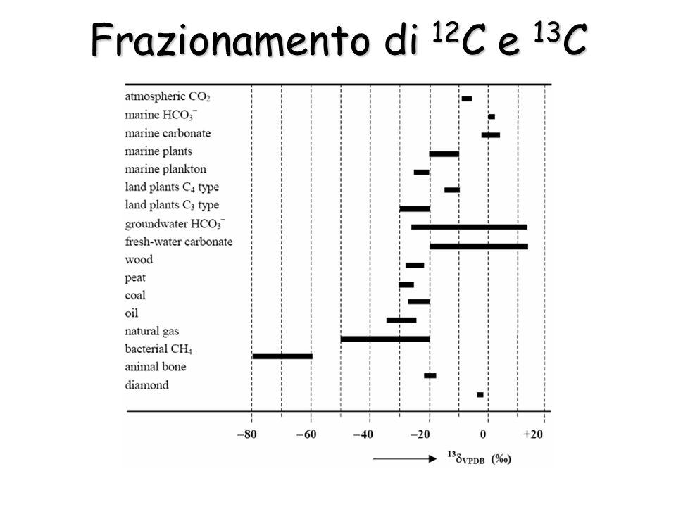 Frazionamento di 12C e 13C