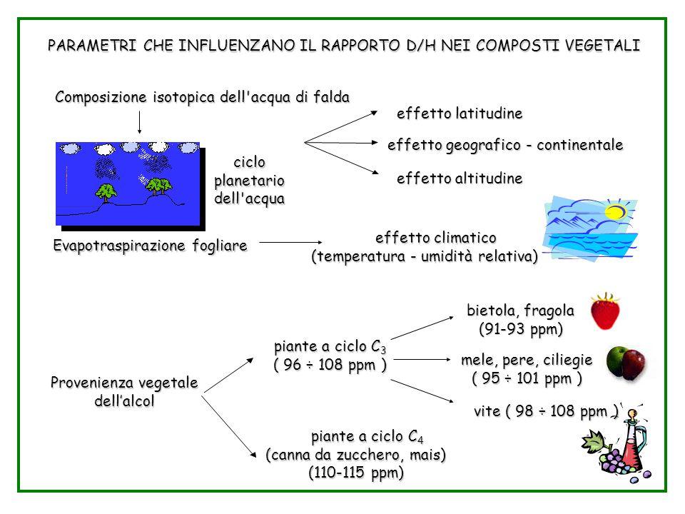 Parametri D/H nei vegetali