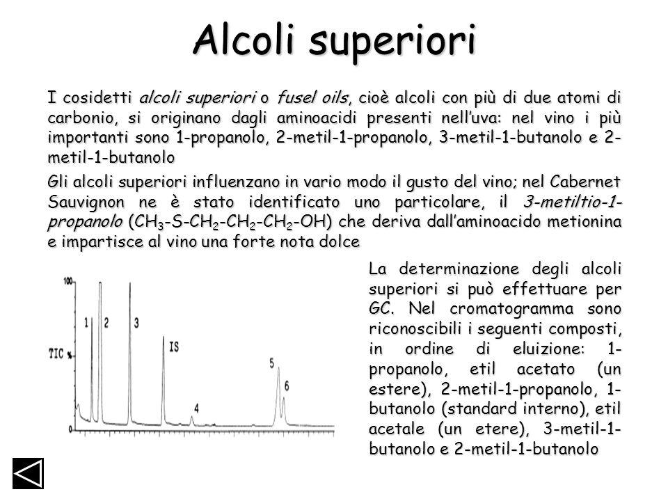 Alcoli superiori