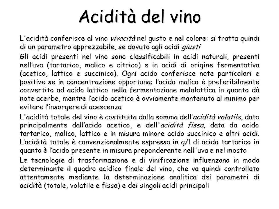 Acidità del vino