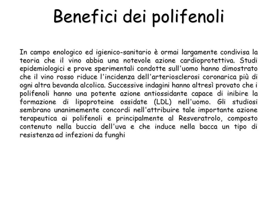 Benefici dei polifenoli