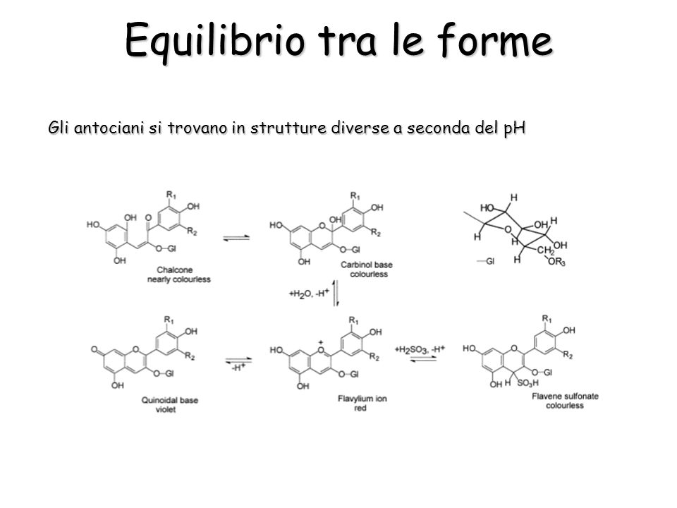Equilibrio tra le forme