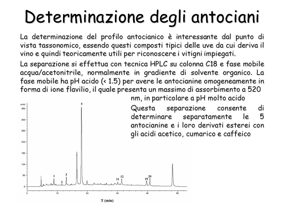 Determinazione degli antociani