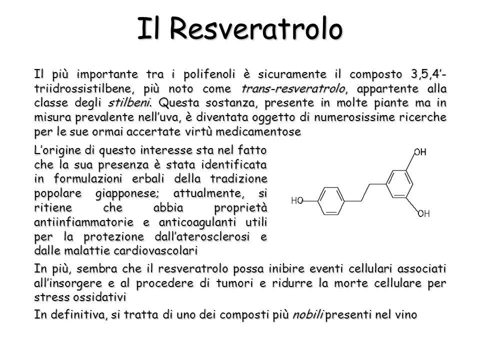Il Resveratrolo