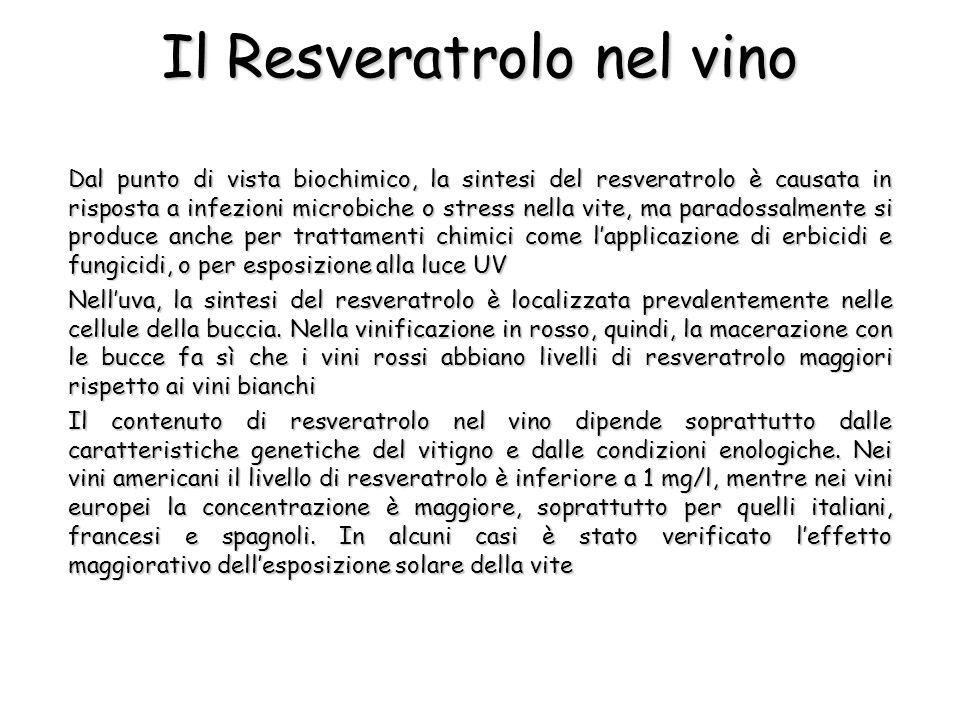 Il Resveratrolo nel vino