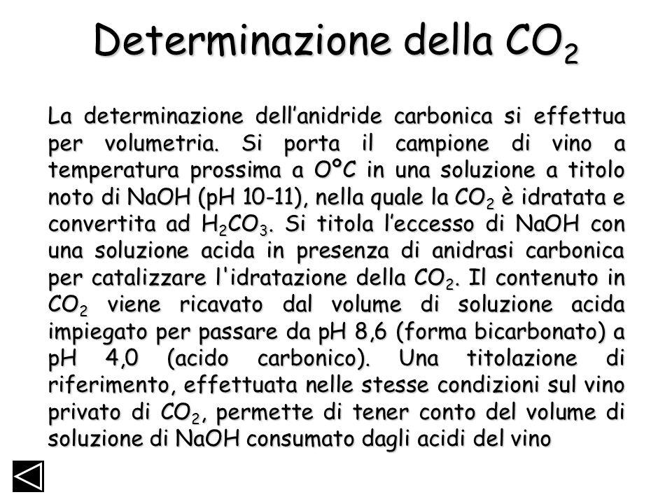 Determinazione della CO2