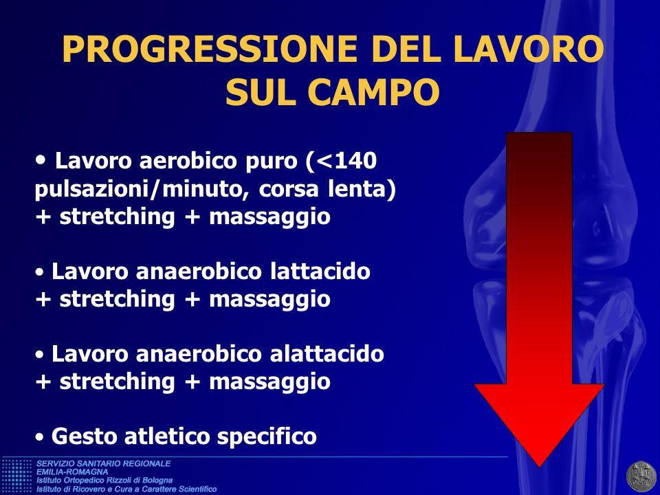 PROGRESSIONE DEL LAVORO SUL CAMPO