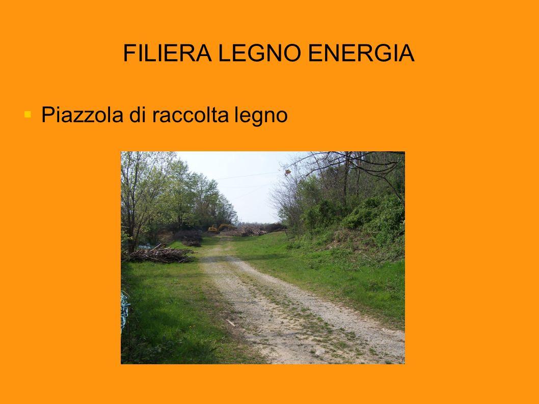 FILIERA LEGNO ENERGIA Piazzola di raccolta legno