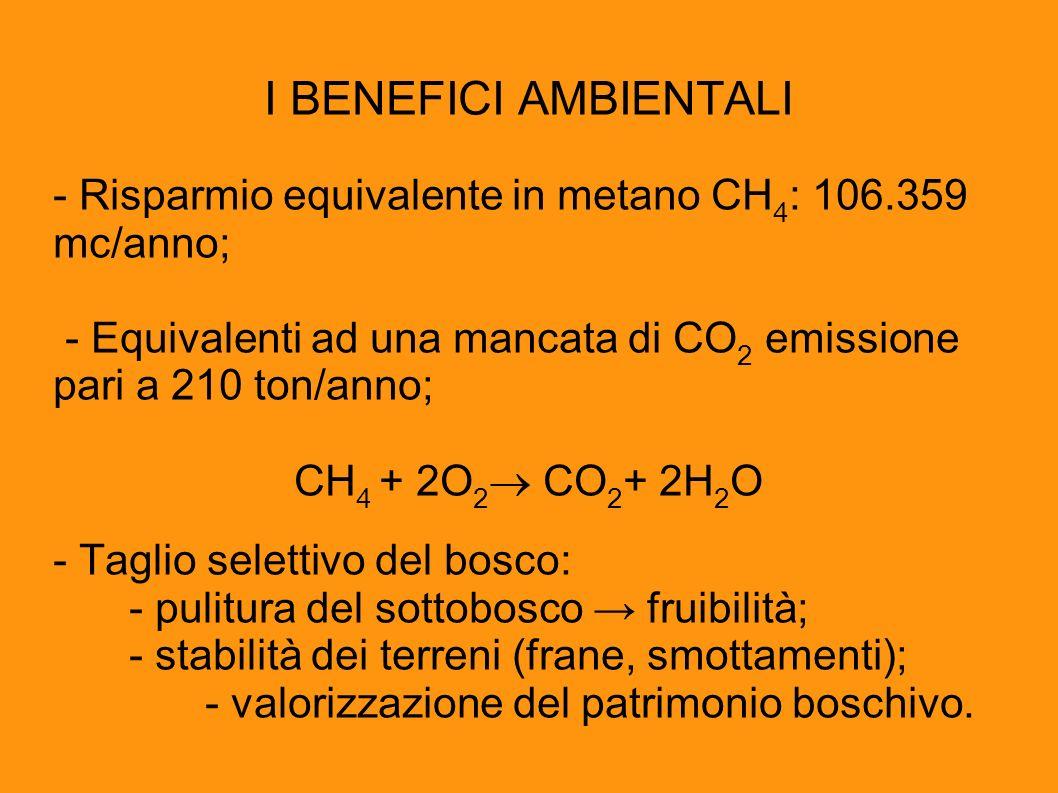 I BENEFICI AMBIENTALI - Risparmio equivalente in metano CH4: 106.359 mc/anno; - Equivalenti ad una mancata di CO2 emissione pari a 210 ton/anno;