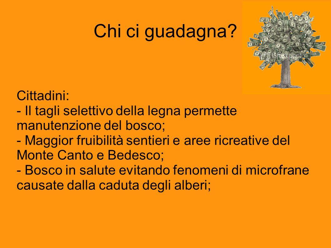 Chi ci guadagna Cittadini: