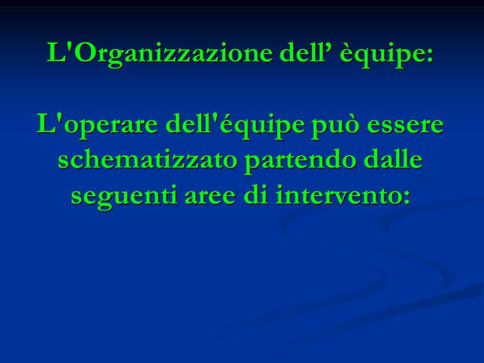 L Organizzazione dell' èquipe: L operare dell équipe può essere schematizzato partendo dalle seguenti aree di intervento: