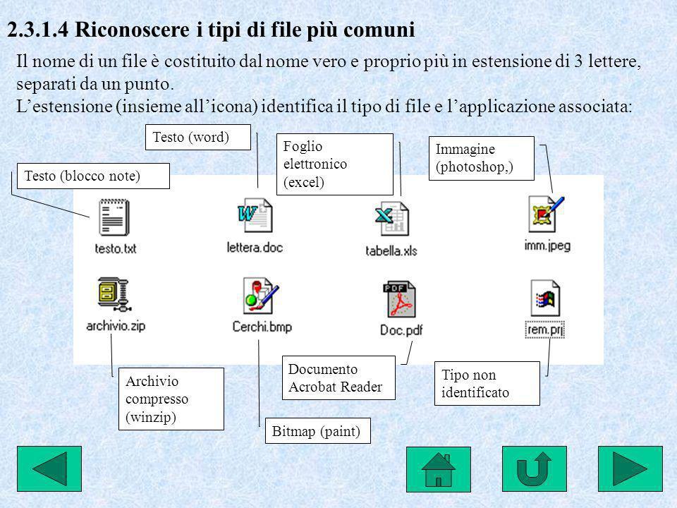 2.3.1.4 Riconoscere i tipi di file più comuni