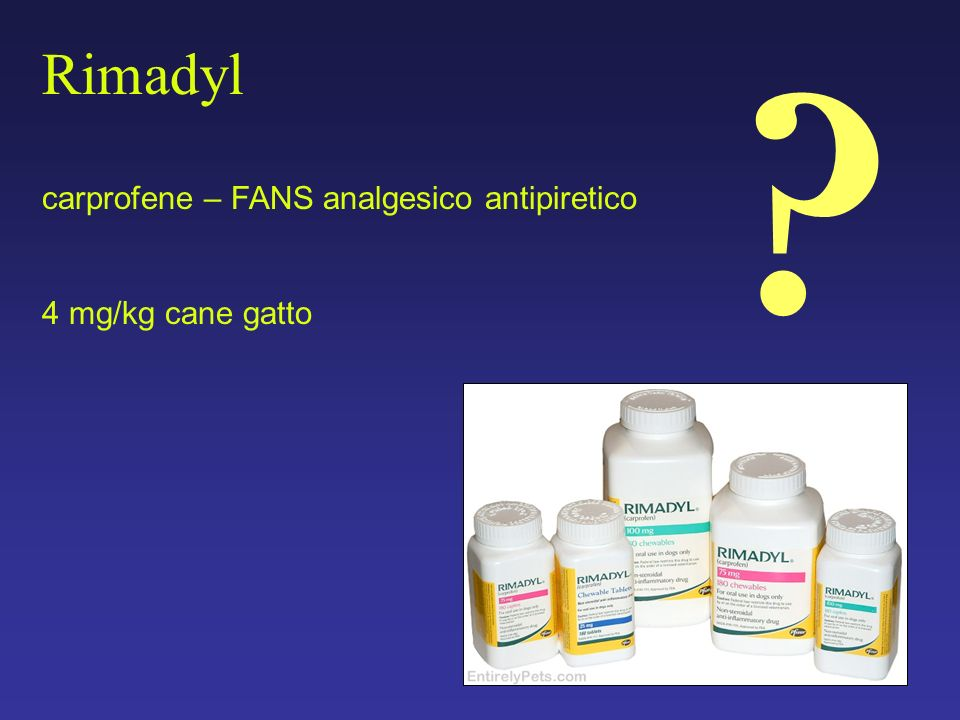 Rimadyl carprofene – FANS analgesico antipiretico 4 mg/kg cane gatto