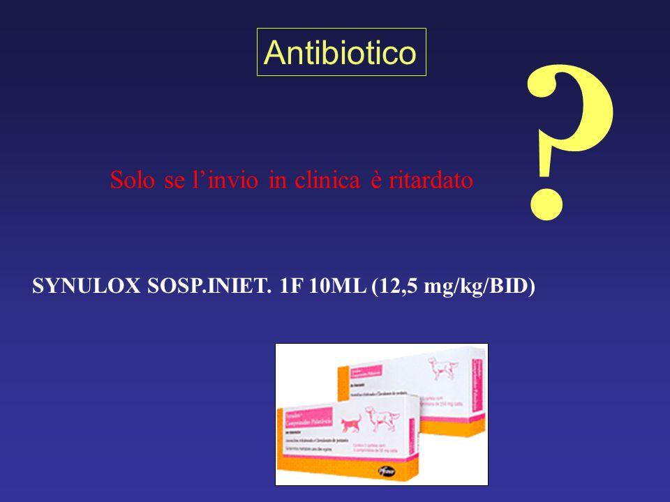 SYNULOX SOSP.INIET. 1F 10ML (12,5 mg/kg/BID)