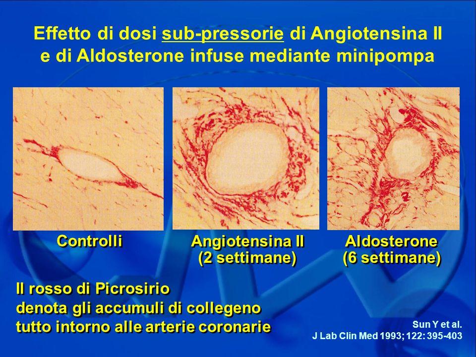 Effetto di dosi sub-pressorie di Angiotensina II