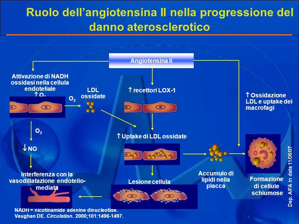 Ruolo dell'angiotensina II nella progressione del danno aterosclerotico