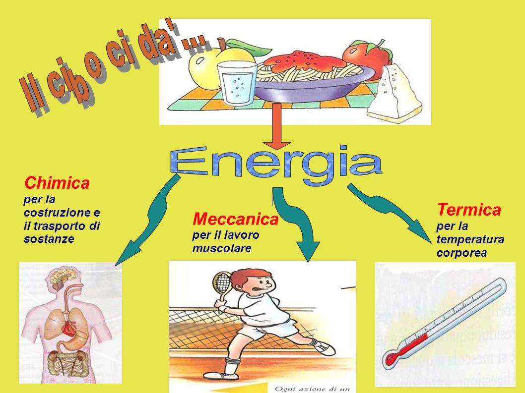 Energia Chimica Termica Meccanica