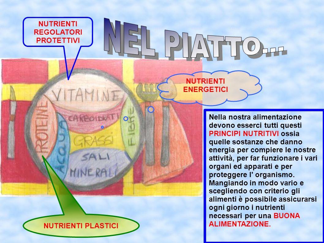 NEL PIATTO... NUTRIENTI REGOLATORI PROTETTIVI NUTRIENTI ENERGETICI