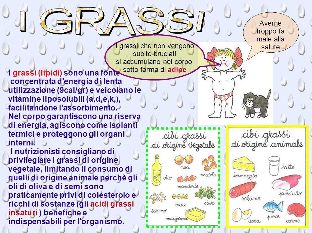 I GRASSI I grassi (lipidi) sono una fonte