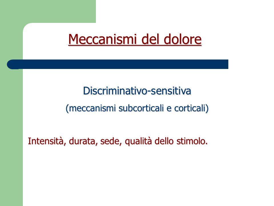 Meccanismi del dolore Discriminativo-sensitiva