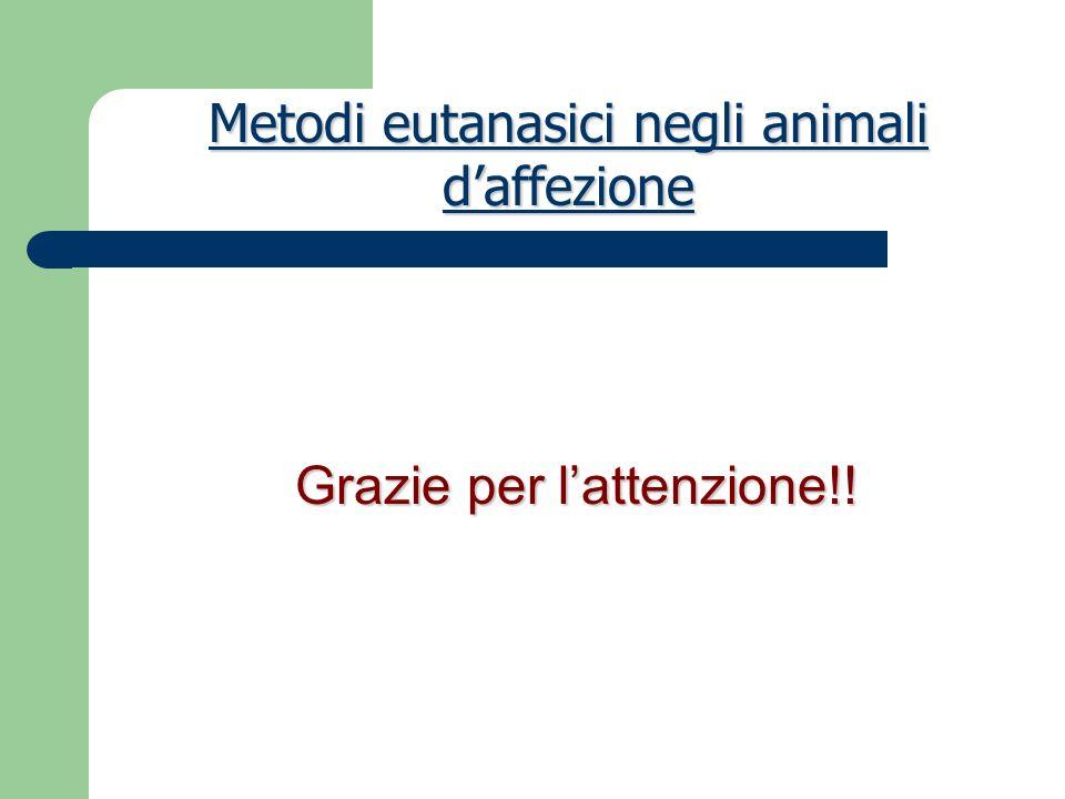Metodi eutanasici negli animali d'affezione