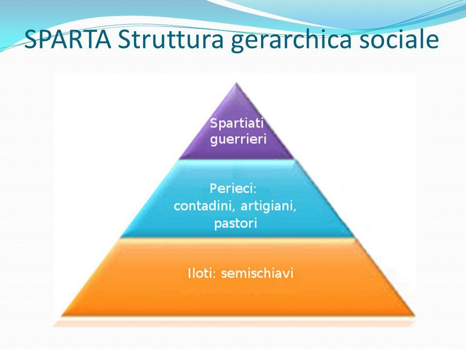 SPARTA Struttura gerarchica sociale