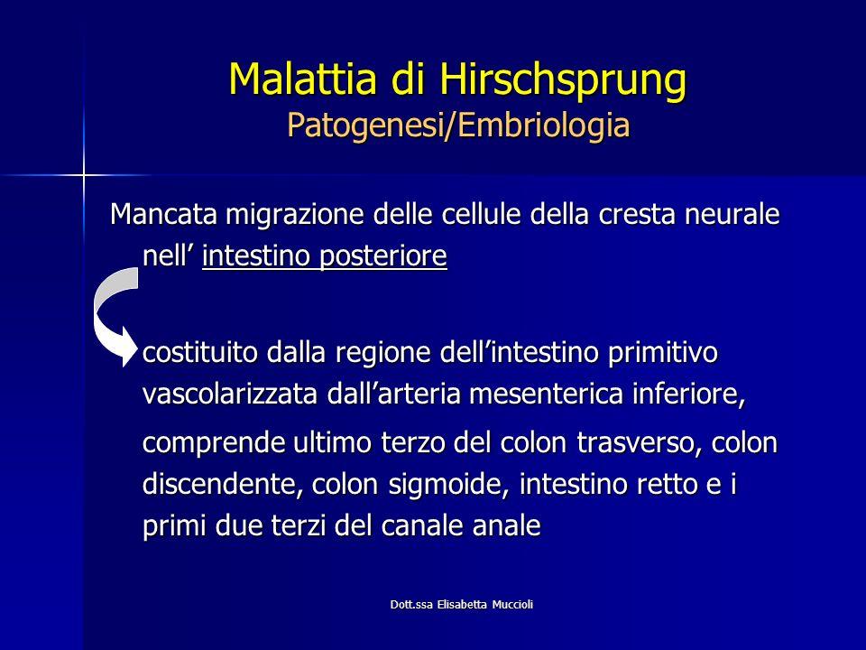 Malattia di Hirschsprung Patogenesi/Embriologia