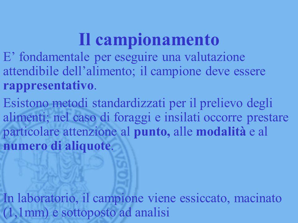 Il campionamento E' fondamentale per eseguire una valutazione attendibile dell'alimento; il campione deve essere rappresentativo.