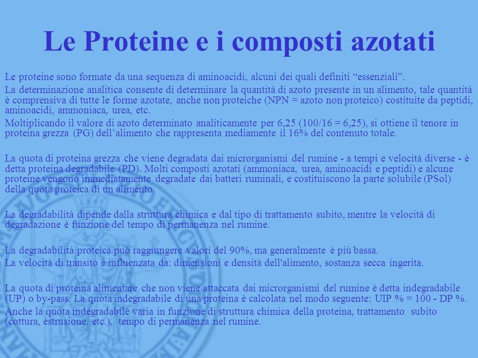 Le Proteine e i composti azotati