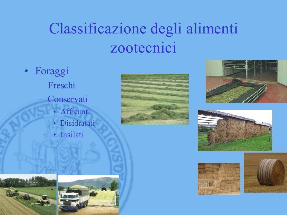 Classificazione degli alimenti zootecnici