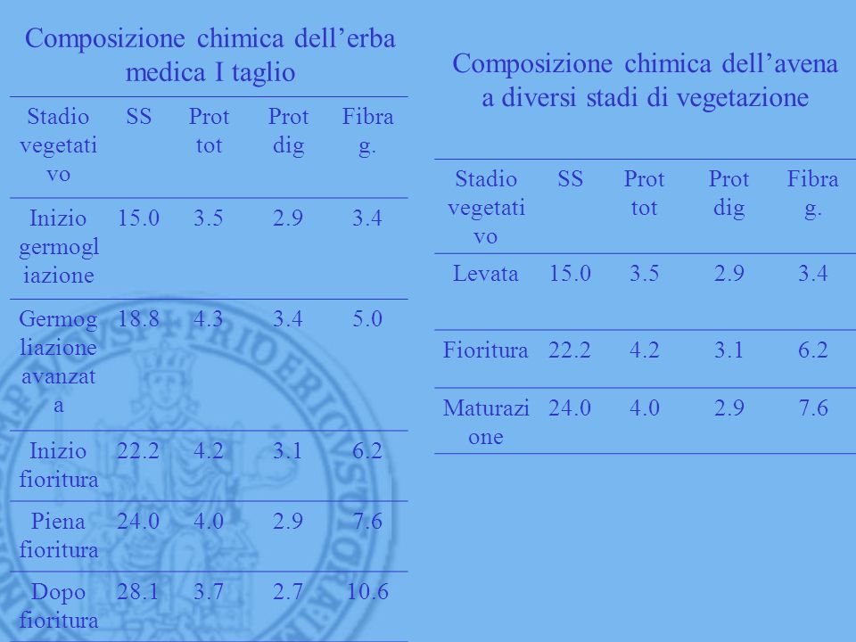 Composizione chimica dell'erba medica I taglio