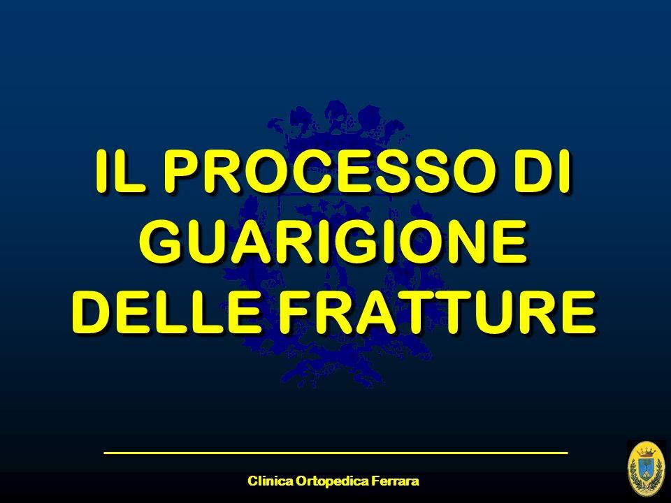 IL PROCESSO DI GUARIGIONE DELLE FRATTURE