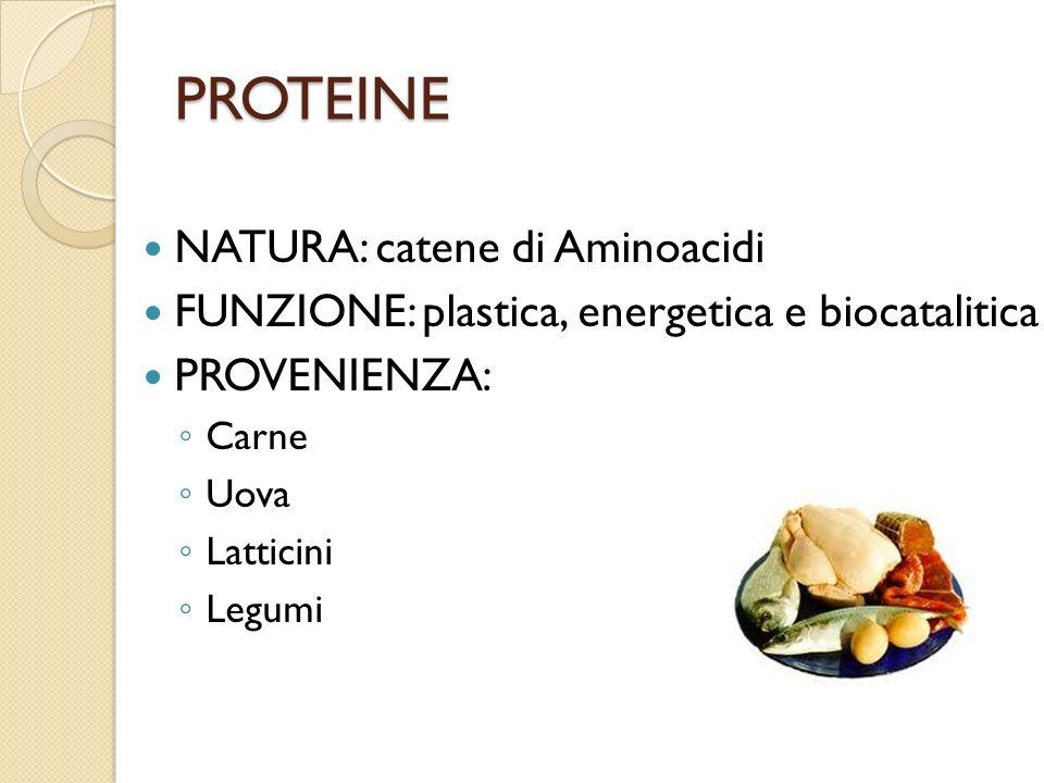 PROTEINE NATURA: catene di Aminoacidi
