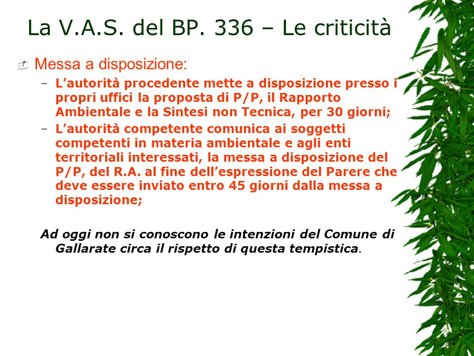 La V.A.S. del BP. 336 – Le criticità
