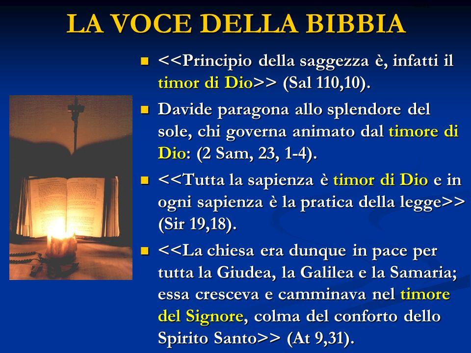 LA VOCE DELLA BIBBIAritardo. <<Principio della saggezza è, infatti il timor di Dio>> (Sal 110,10).