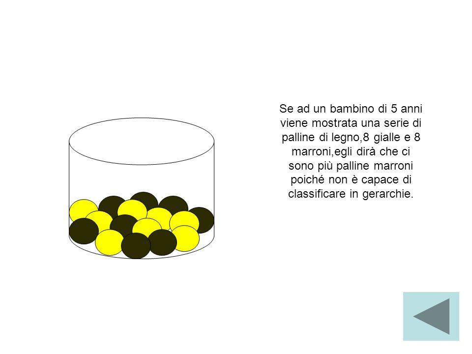 Se ad un bambino di 5 anni viene mostrata una serie di palline di legno,8 gialle e 8 marroni,egli dirà che ci sono più palline marroni poiché non è capace di classificare in gerarchie.