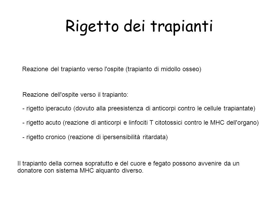Rigetto dei trapianti Reazione del trapianto verso l ospite (trapianto di midollo osseo) Reazione dell ospite verso il trapianto: