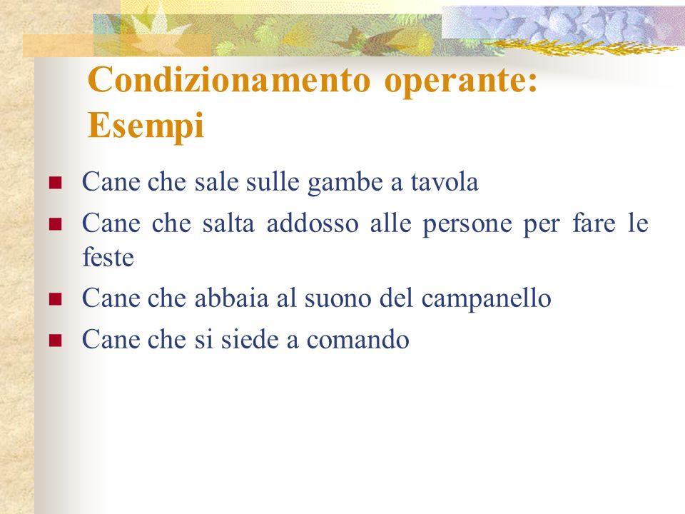 Condizionamento operante: Esempi
