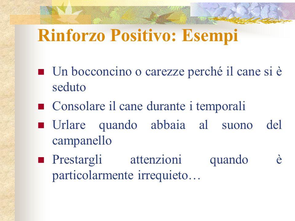 Rinforzo Positivo: Esempi