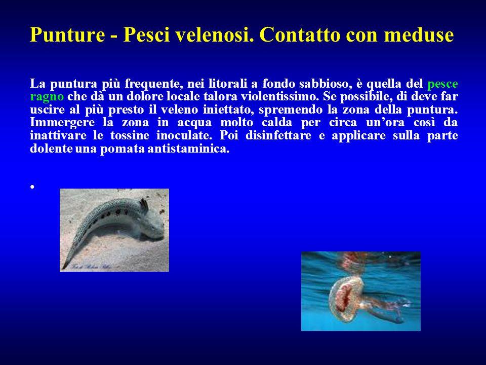 Punture - Pesci velenosi. Contatto con meduse