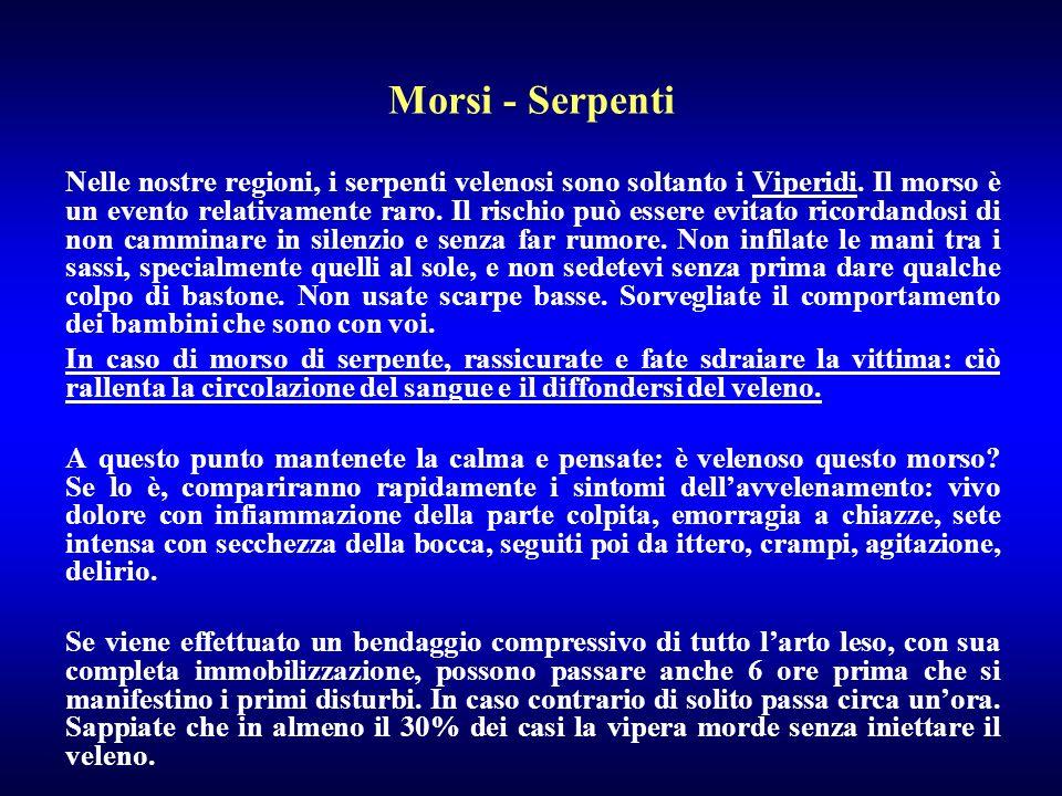Morsi - Serpenti