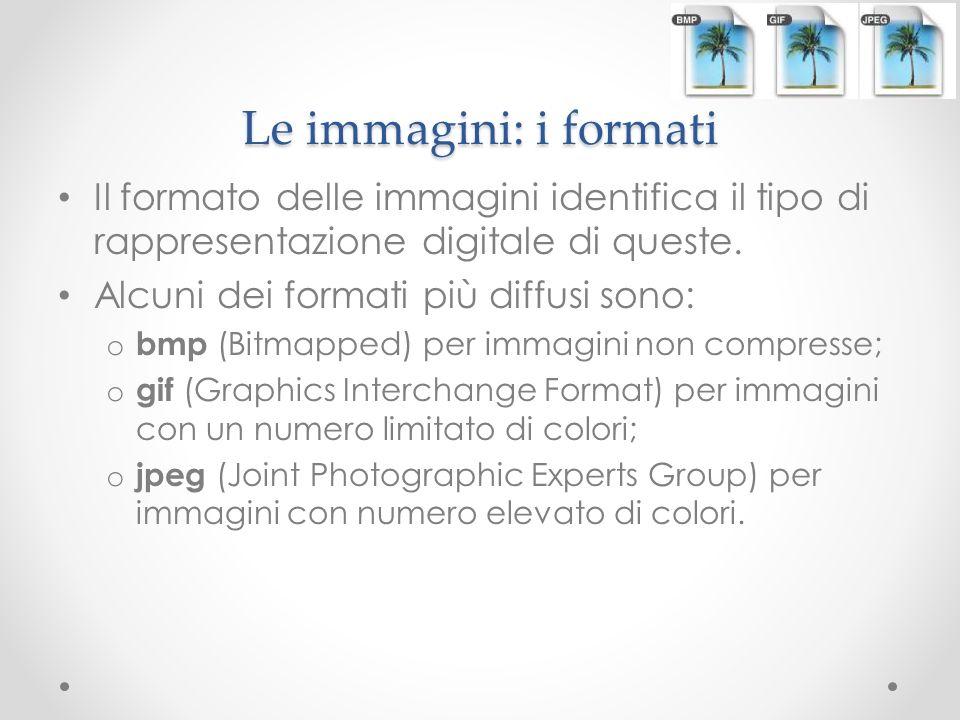Le immagini: i formati Il formato delle immagini identifica il tipo di rappresentazione digitale di queste.