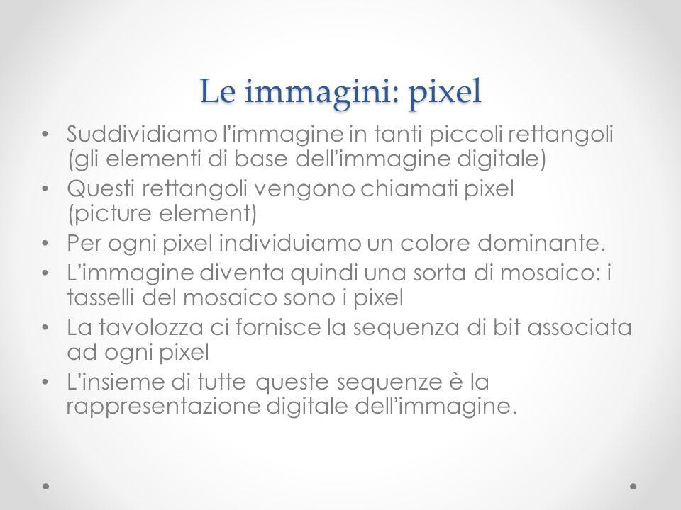 Le immagini: pixel Suddividiamo l'immagine in tanti piccoli rettangoli (gli elementi di base dell'immagine digitale)