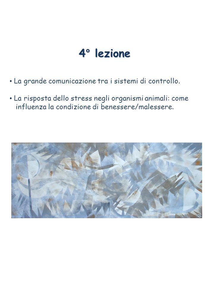 4° lezione La grande comunicazione tra i sistemi di controllo.