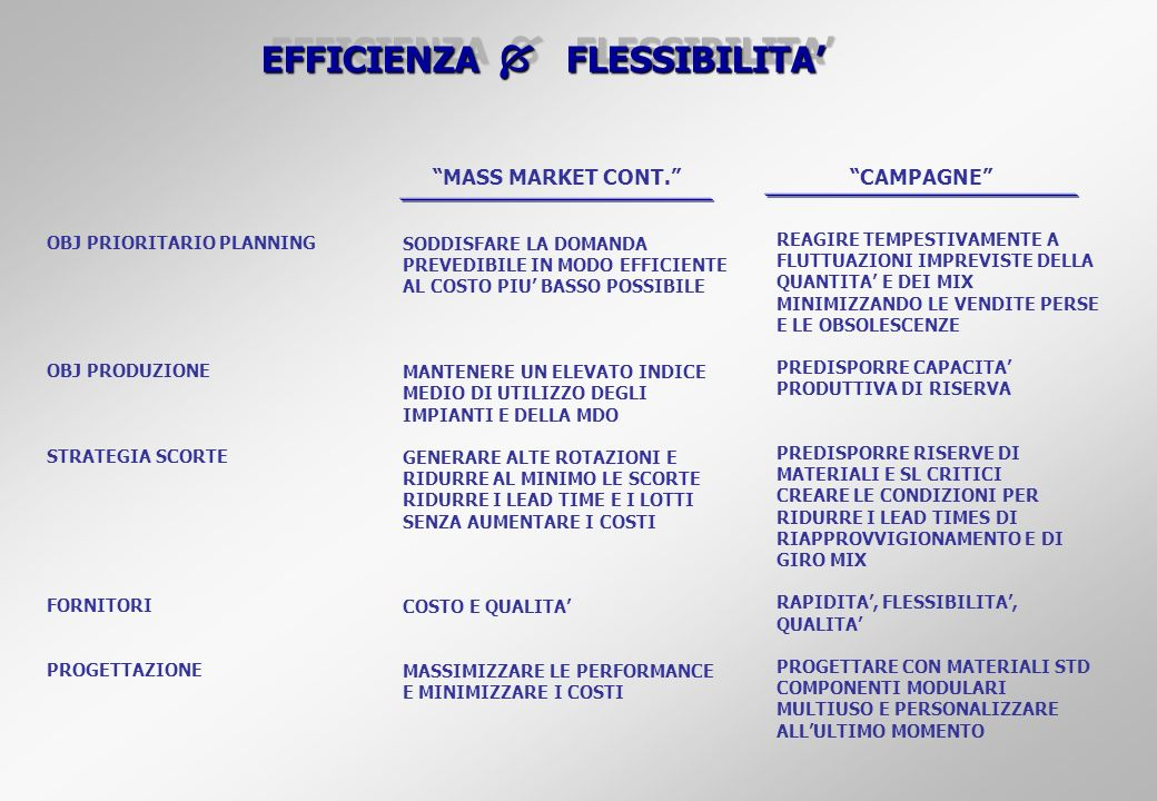 EFFICIENZA  FLESSIBILITA'