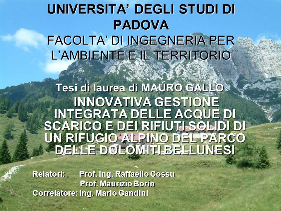 Tesi di laurea di MAURO GALLO