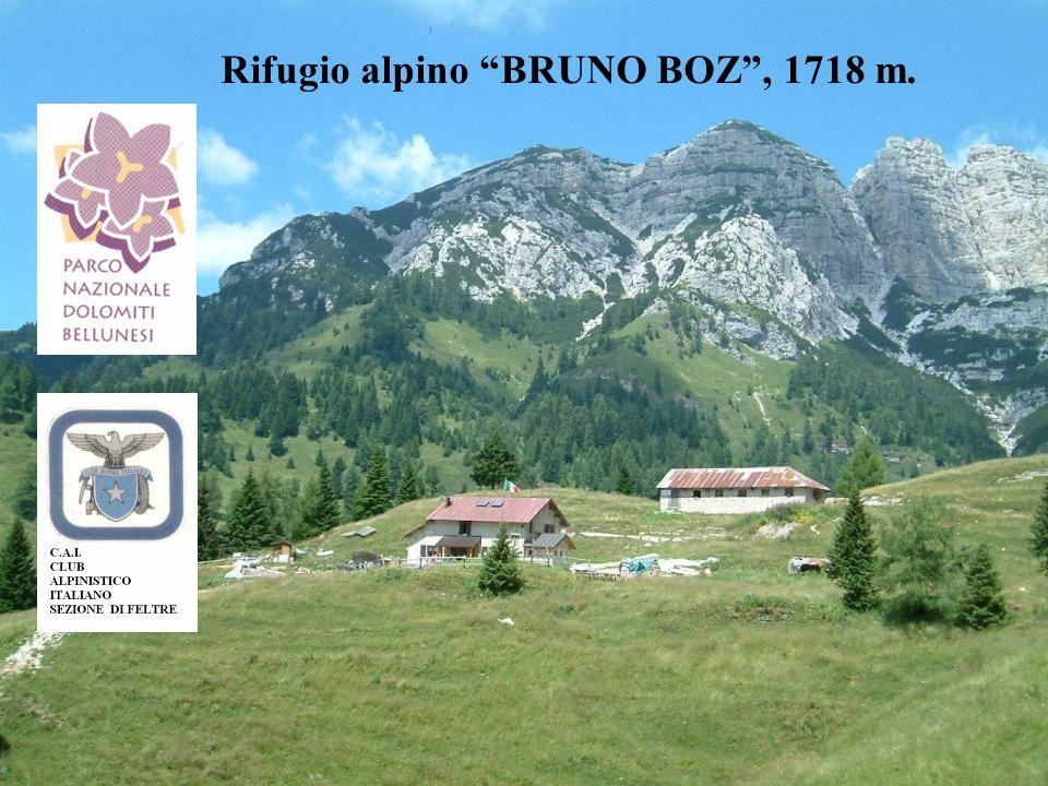 Rifugio alpino BRUNO BOZ , 1718 m.