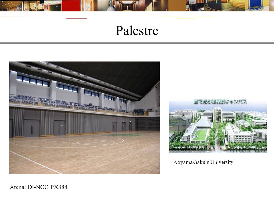 Palestre Aoyama Gakuin University Arena: DI-NOC PX884