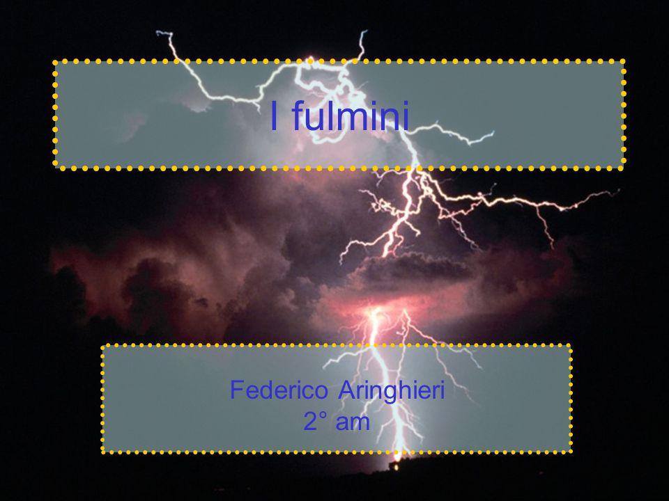 Federico Aringhieri 2° am